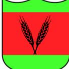 Polish German Soldier