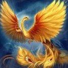 golden_birdo